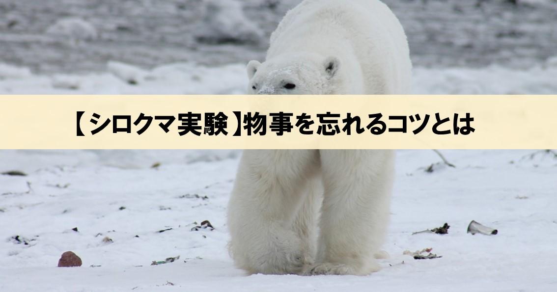 【シロクマ実験とは】物事を忘れるコツは「忘れなくて良い」と思うこと!_アイキャッチ画像